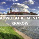 Adwokat alimenty Kraków